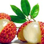 lychee fresh|Canned Fruits|