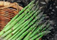 green asparagus fresh|Canned Vegetables|